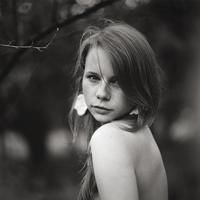 Аватар пользователя AndreyKANT